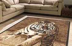 Novelty Rugs
