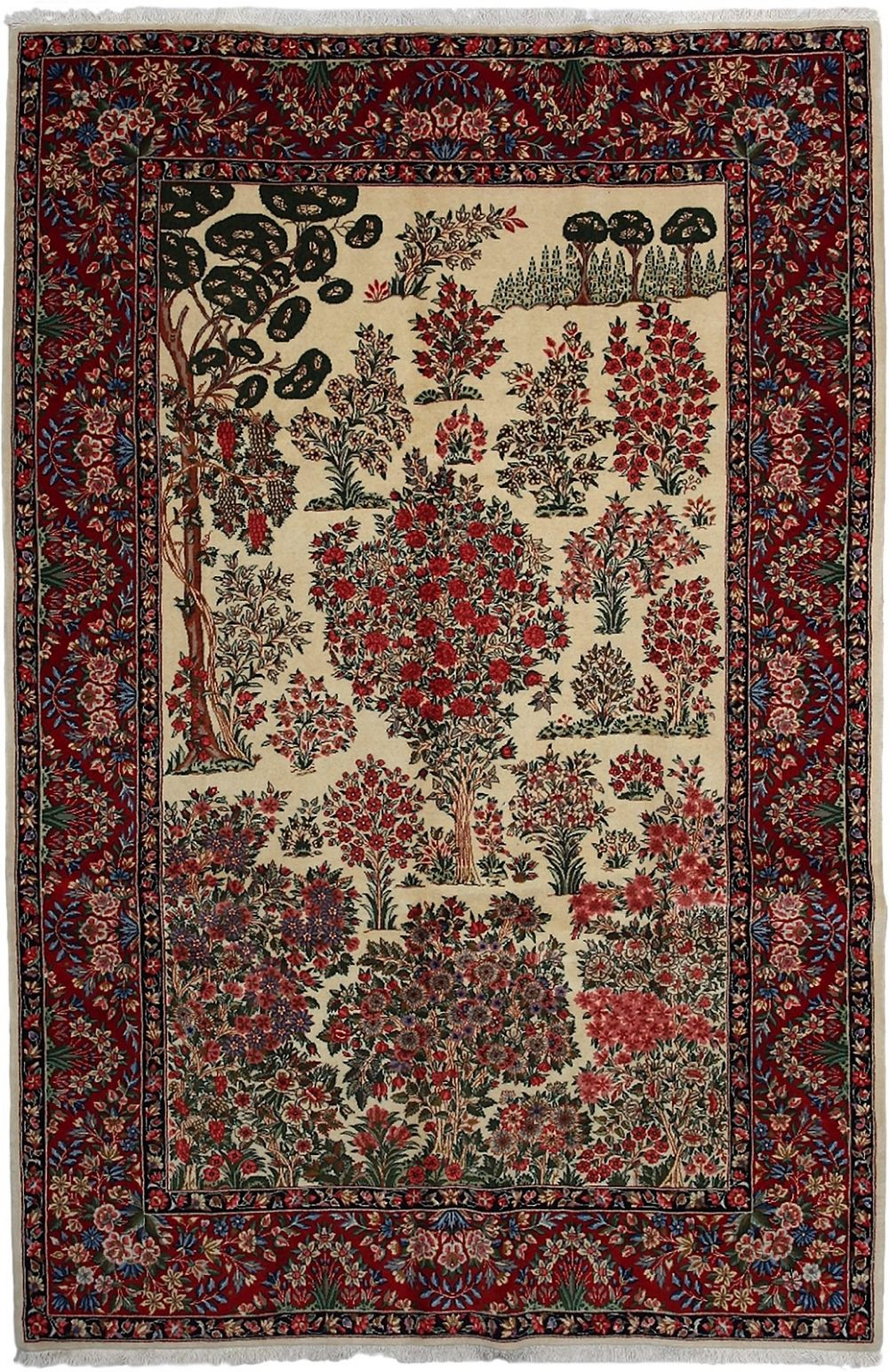 darya kerman traditional area rug collection
