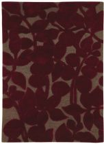 Dynamic Rugs Country & Floral Allure Area Rug Collection