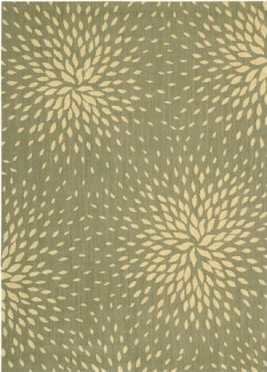 Nourison Transitional Capri Area Rug Collection