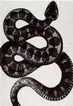 NuLoom Contemporary Thomas Paul Power loomed Serpent Area Rug Collection