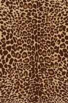 Well Woven Animal Inspirations Kings Court Leopard Area Rug Collection