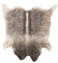Loloi Transitional Grand Canyon Area Rug Collection