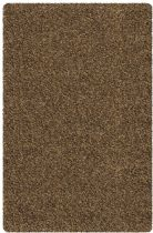 Chandra Shag Core Shag Area Rug Collection