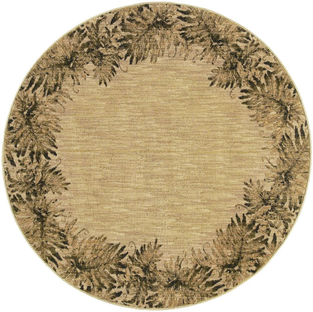 shaw tommy bahama home transitional area rug collection