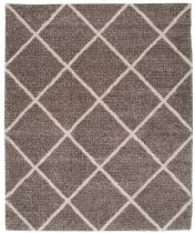 Nourison Shag Brisbane Area Rug Collection