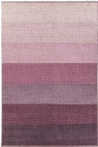 Chandra Contemporary Bidan Area Rug Collection