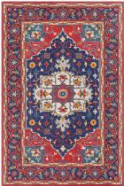 PlushMarket Traditional Mungeli Area Rug Collection
