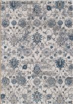 Dynamic Rugs Transitional Astoria Area Rug Collection