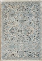 Dynamic Rugs Transitional Juno Area Rug Collection