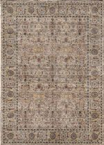 Momeni Traditional Caspian Area Rug Collection