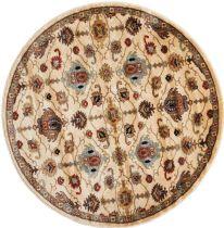 Nourison Traditional Delano Area Rug Collection