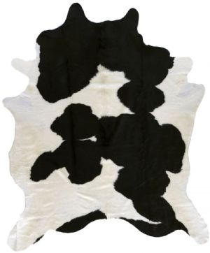 Surya Animal Inspirations Duke Area Rug Collection