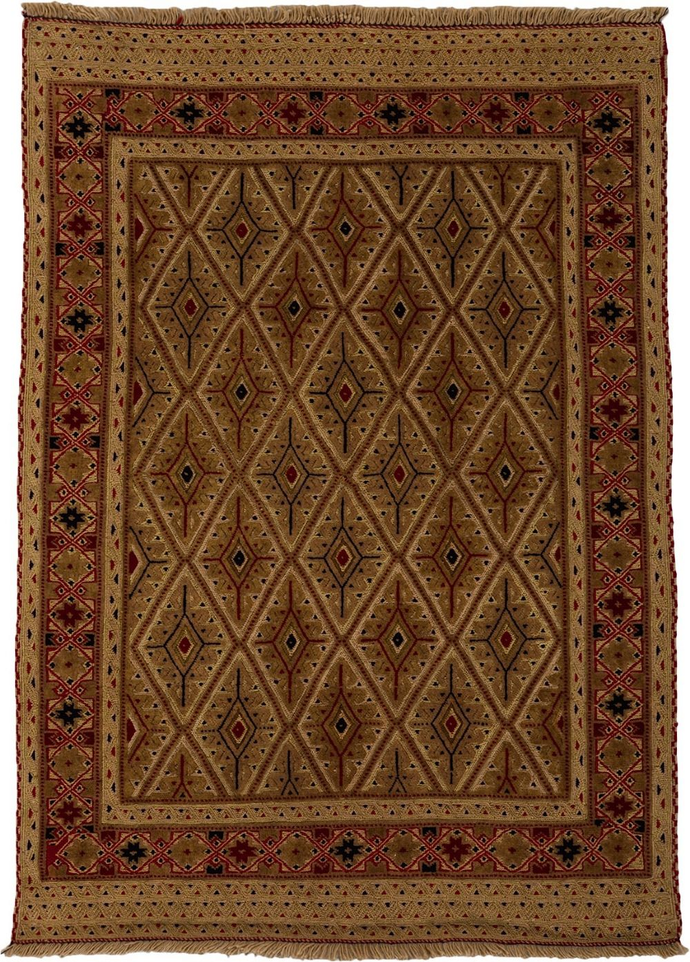 darya barjasta traditional area rug collection