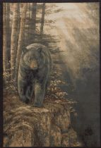 United Weavers Animal Inspirations Ww Lic Des Genesis Rm Rocky Blk Bear Area Rug Collection